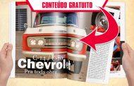 Chevrolet C-10 / C-14. Pra toda obra...